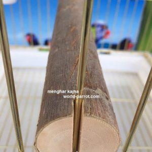 چوب قفس طوطی