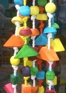 خرید اسباب بازی طوطی