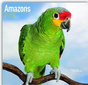 طوطی های آمازون