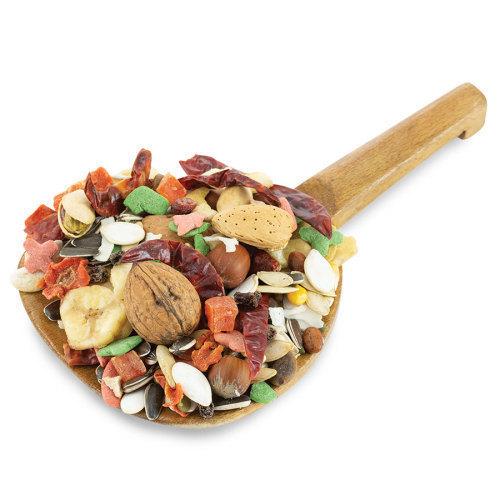 غذای طوطی