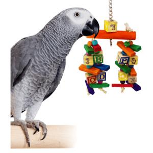 toy-bird-store-shop