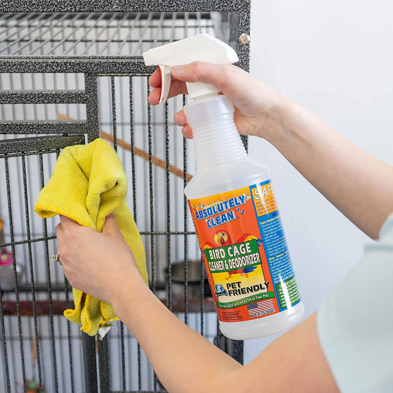 طرز صحیح نظافت و بهداشت قفس طوطی