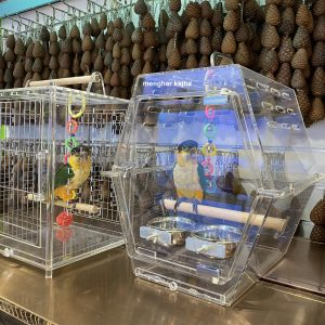acrylic-box-carrier-parrot-birdcage
