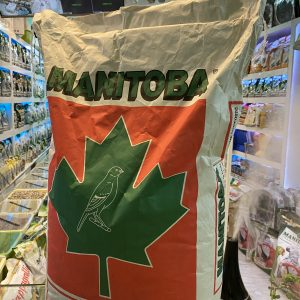 Sunflower Manitobasrl Seed2
